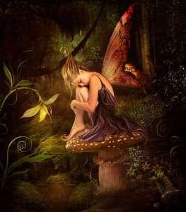 beautiful-fairies-fairies-17416869-600-685-2016_05_14-02_02_56-utc