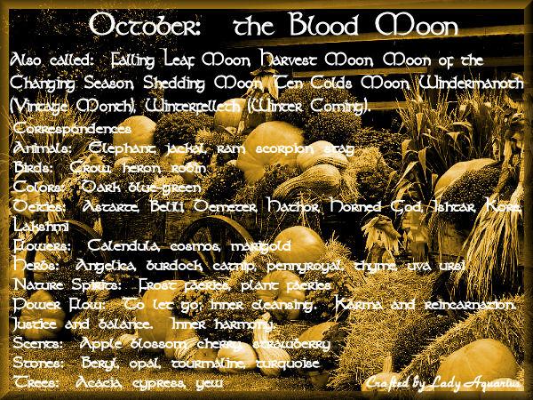 october_blood-moon-2016_05_14-02_02_56-utc