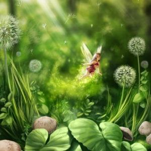 flower-fairy-2016_05_14-02_02_56-utc