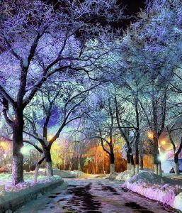 snowy-magic-2016_05_14-02_02_56-utc